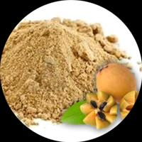 Sapota Powder