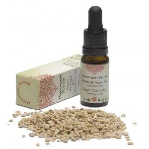 Organic Cactus Oil