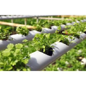 PVC Hydroponic Pipes