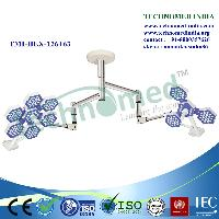 Double Dome ceiling light