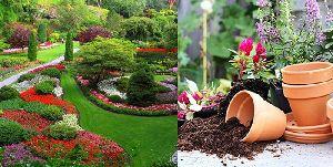 Garden Development Contracting Services