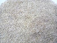 Organic Quinoa Seed