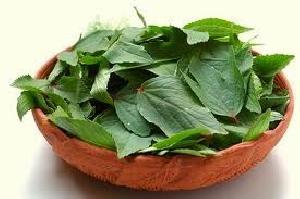 Fresh Gogu Leaves (Pulicha Keerai)