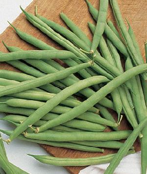 Fresh Green Beans (pachai Avari)