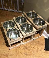 Wooden Pet Bowl