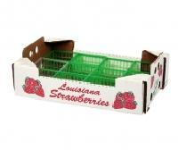 Fresh Fruit Boxes