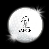 White LED Light Up Glow Golf Balls