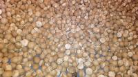 Arecanut Supari (/mangalore Chaali0)