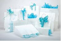 White Kraft Paper Shopping Bags, Shoppers