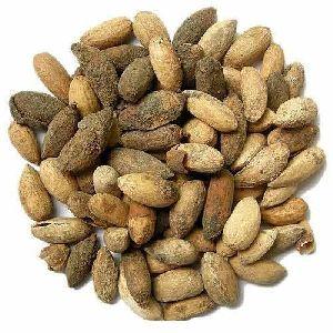 Natural Dried Neem Kernels
