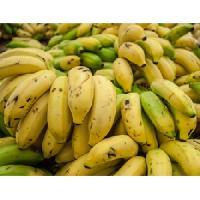 Hill Banana