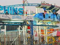 Miami Dolphins Roller Coaster