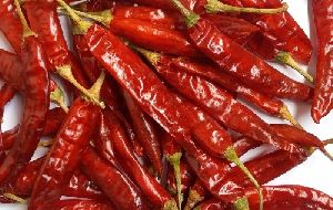 Dry Red Chillies/cayenne Pepper