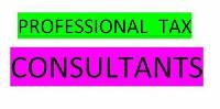Professional Tax Consultant