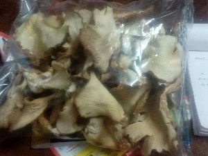 Dry Oyster Mushrooms
