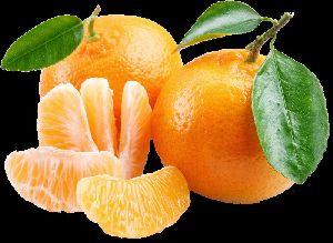 Fresh Kinnow (Mandarin)