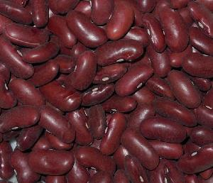Dark Red  Kidney Beans