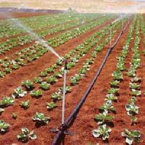 Drip Irrigation Sprinkler System