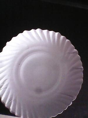 Duplex Paper Dish Raw Material