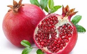 Pomegranate export
