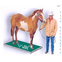 Stud Weighing Scale