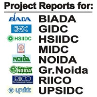 Project Report Service