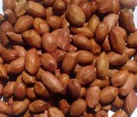 Groundnut Seeds