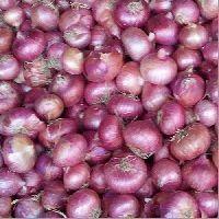 Fresh Pink Onion