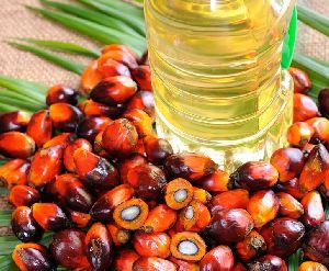 Palm Oil 01