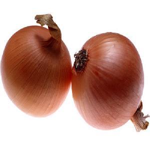 Dark Brown Onion