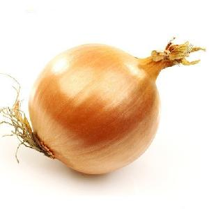 Light Brown Onion