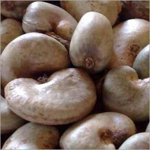 Raw Cashew Nuts