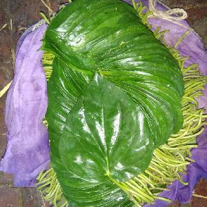 Betel Leaves(Pala Meetha Patta)