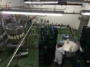 Milk Packaging Services