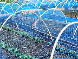 Agriculture Nets