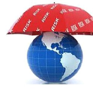 Cargo Insurance Services