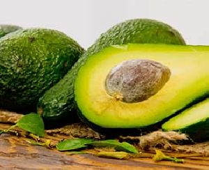 Avocado in Bangalore - Manufacturers and Suppliers India