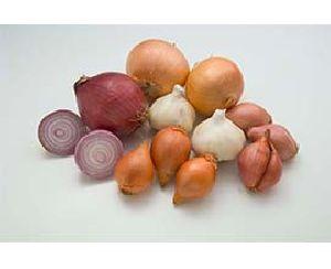 Fresh Mixed Onion