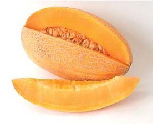 Melon Sweet