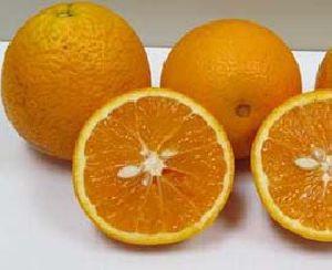 Orange for Juice