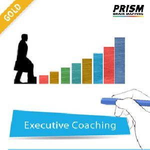 Gold Individual Personal Coaching Services