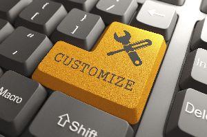 Customize Software Development
