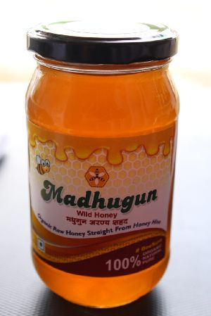 500gm Madhugun Wild Honey