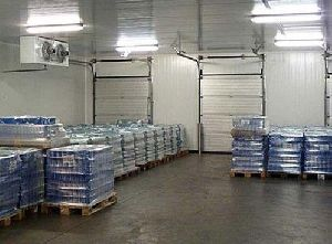 Commercial Seed Cold Storage Rental Services