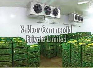 Banana Cold Storage Rental Services