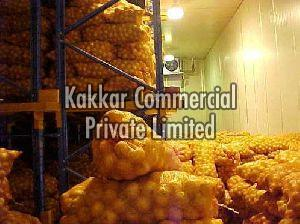Onion Cold Storage Rental Services
