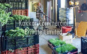 Vegetable Warehouse Rental Services