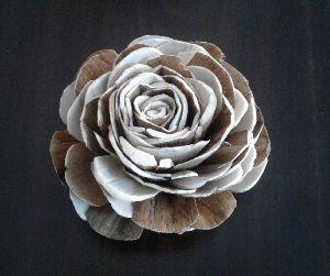 Shola Rose