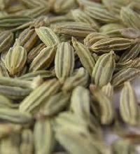 Cumin Seeds & Cumin