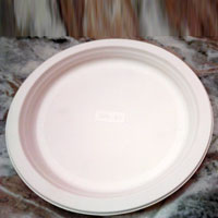 Biodegradable Paper Plates